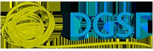 DGSF Logo